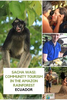 Sacha Wasi: Community Tourism in the Amazon Rainforest, Ecuador South America, Latin America, Just Dream, Amazon Rainforest, Galapagos Islands, The Province, Quito, Plan Your Trip, Ecuador
