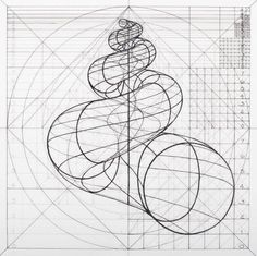 Venezuelan artist Rafael Araujo creates meticulously detailed drawings of the Fibonacci spiral in naturenow, you can color along. Geometric Drawing, Geometric Shapes, Yi King, Spirals In Nature, Sacred Geometry Art, Nature Geometry, Poster Design, Math Art, Geometric Designs
