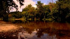 Ozark Hellbender Conservation (updated)