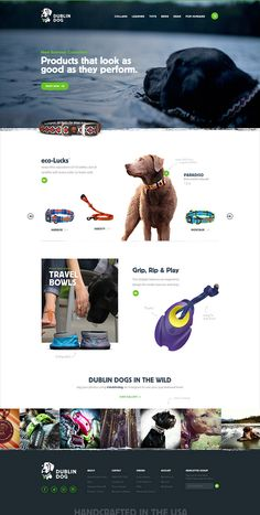 Unique Web Design, Dublin Dog #WebDesign #Design (http://www.pinterest.com/aldenchong/)