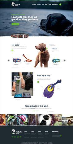Unique Web Design, Dublin Dog #WebDesign #Design (http://www.pinterest.com/aldenchong/)