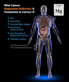 What Causes Magnesium Deficiency & Treatments to Correct it? Magnesium Foods, Magnesium Deficiency, Metabolic Disorders, Metabolism, Medical, Bees, Health, Gift Ideas, Health Care