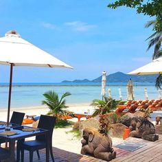Summer is approaching  Muang Samui Spa Resort #muangsamuisparesort  #discovermuangsamuisparesort #discovermuangsamui #muangsamui #muangsamuiexperience #chawengbeach #kohsamuiisland #bestsofvacations #summer