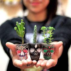 New Succulent Planter Ideas Glass Flower Pots 15 Ideas Painted Flower Pots, Painted Pots, Euphorbia Pulcherrima, Pots D'argile, Skull Decor, Cactus Y Suculentas, Cacti And Succulents, Garden Art, House Plants