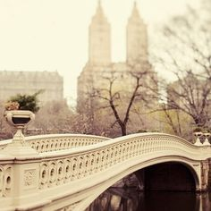 One place I want to visit is New York City. While I'm there I want to go to Central Park.