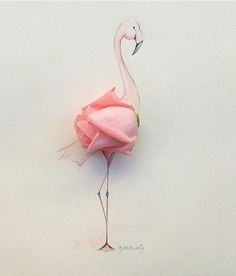 A rose by any other name? Flamingrose!!!