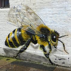 Bee Graffiti by Louis Masai Urban Street Art, 3d Street Art, Amazing Street Art, Street Artists, Urban Art, Amazing Art, Awesome, Murals Street Art, Street Art Graffiti