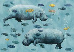 surreal hippos