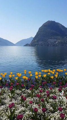 Lugano Switzerland Ticino Tessin