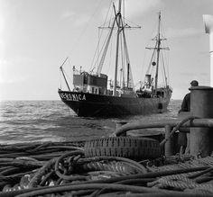 De Borkum Riff, het eerste schip van Radio Veronica, bij de pensionering in november 1964 - Collectie Sleepvaartmuseum Maassluis