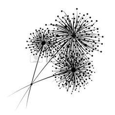 Dandelion flowers for your design photo