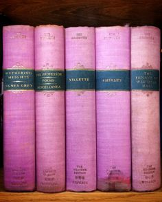 At Pretty Page Turner our favorite cover models are books. The Brontë Sisters Heather Edition Bronte Sisters, Rhyme And Reason, World Of Books, Page Turner, Cover Model, Pink Patterns, Bedroom Art, I Love Books, Color Shades