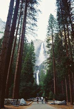 Waterfall and woods #waterfall #woods #adventure