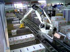 JMP ENGINEERING - Robotic Produce Palletizing with Robot on a Rail - YouTube
