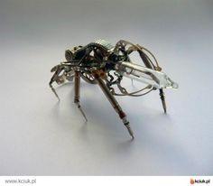 owady mechaniczne - Szukaj w Google