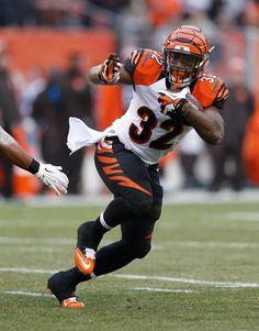 Wholesale 40 Best Cincinnati Bengals images | Cincinnati Bengals, Big cats