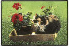 Calico Cat Doormat