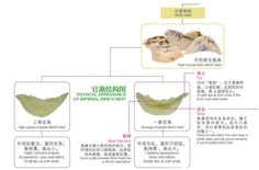 燕窝分类一览表  Summary Diagram Swiftlet Nest, Edible Bird's Nest, Bird Nests, Soup, Chinese, Packaging, Birds, Bird, Soups