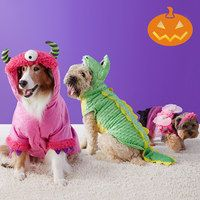 Take a look at the Happy Hauntings: Pet Costumes on #zulily today!