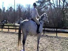 Judge My Ride Premium Evaluation Winner – Laura Maynard and Rex