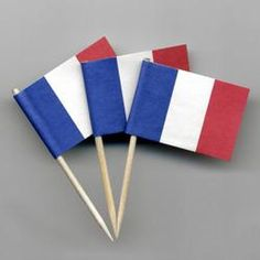 bastille day french flag