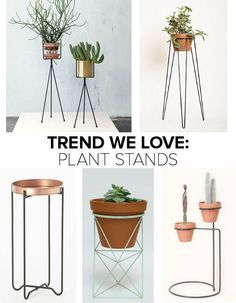 Trend We Love: Plant Stands