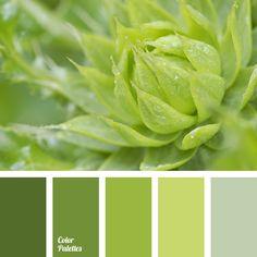 Color Palette 3426