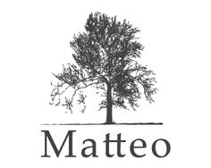 Matteo /  Logo design - The concept is for real estate services and/or Consulting services. The simple yet complex tree stands for honesty,good roots,history,business attitude Price $300.00