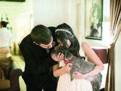 """Wedding Dogs: Juhi was volunteering at a Save Our Street Dogs adoption drive when she fell in love with nine-year-old rescued dog Bebe, who is blind from cataracts. After first fostering and then adopting him, this gorgeous pooch not only attended the couple's wedding but even received a special mention in Juhi's vows. Bebe, she said, had become the """"centre of both (their) lives"""" and made the pair """"go from a couple to a family"""". #weddingdogs #seniordogrescue…"""