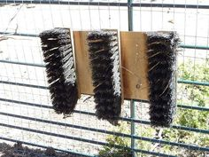 broom ends to allow goats to brush their own coats :) - Gardening For You