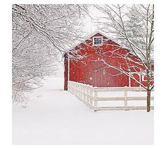 Cindy Taylor Red Barn In Snow Print, Barn Landscape Photo, Modern Country Home Wall Art, Winter Snow Photography, Rustic Wall Decor