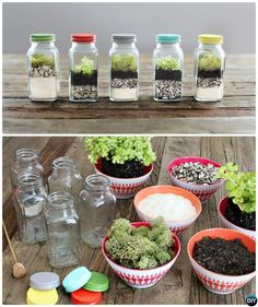 Spice Jar Terrarium-DIY Mini Fairy Terrarium Garden Ideas