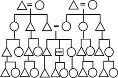 A useful chart of the basic key to a kinship chart or
