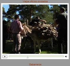 """Viejos oficios olvidados: """"Los gabarreros de El Espinar"""" (Segovia, España). En la Sierra del Guadarrama, la abundancia de pinares de pino silvestre, más conocido como pino """"Valsaín"""" en la zona, propició el desarrollo de la actividad maderera y la dedicación a actividades relacionadas con los pinares de muchos vecinos de las tierras de El Espinar. Fueron conocidos como """"gabarreros"""". Se dedicaban a la corta de leña para venderla... Cortesía de """"Ancha es Castilla y León"""" (España)."""
