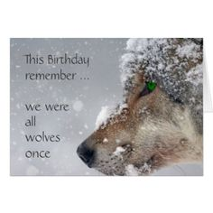 Happy Birthday Getting Older Wolves Humor Card - birthday cards invitations party diy personalize customize celebration