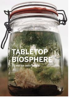 This is too cool, what a better way to illustrate the inter-workings of a biome for a young person? (Tabletop Biosphere)