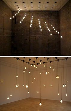 dotted bulbs