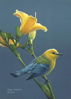 'Colors of Summer' Prothonotary Warbler painting by Mark Mueller. Primary medium is acrylics.