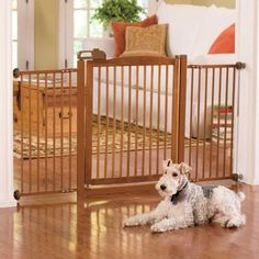 Extended Pet Gate, Extra Wide Pet Gate  Just ordered from Improvements Catalog