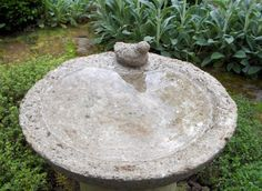 Gardens Ideas, D G Gardens, Bird Baths, Hypertufa Ideas, Business Bees, Hypertufa Planters, Birds Bath, Veggies Gardens, Hypertufa Moldings
