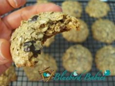 Gluten free, dairy free, and refined sugar free lactation cookies!