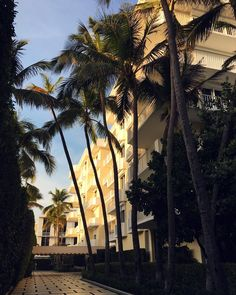 Palm Beach vibes #always by thestylebungalow   @blckrc