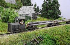 narrow gauge logging Plus Ho Trains, Model Trains, Train Info, Train Miniature, Garden Railroad, Train Truck, Abandoned Train, Rail Transport, Oise