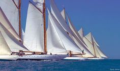 beautiful classic yachts lined up for racing