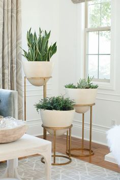 Bring the outside in! These elegant planters are a great way to liven up a room corner, entrance way or office. Plants add warmth to a space and tiered planters beautifully display them.