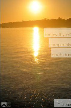 Renew Thyself | In The Next 30 Days