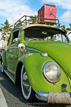 VW lime rat