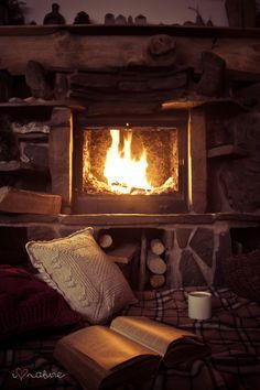 Fire, a great book, comfortable pillows, cozy blankets, and something warm to drink. THIS is what an autumn evening should look like.