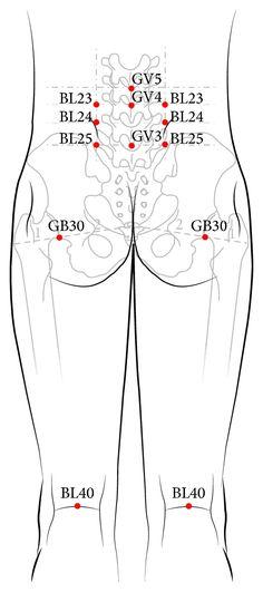 GV3, GV4, and GV5 and both sides of BL23, BL24, BL25, BL40, and GB30 (13 acupuncture points).