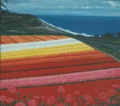 Ranunculus fields in Carlsbad, CA --San Diego county, near Legoland: theflowerfields.com. Open this year 3/01-5/13/2012. AMAZING!